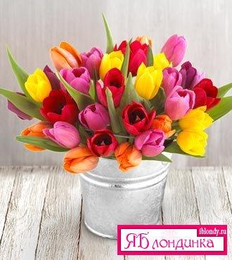 Цветы счастья