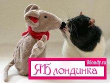 Гороскоп 2008 - Год Земной Крысы.